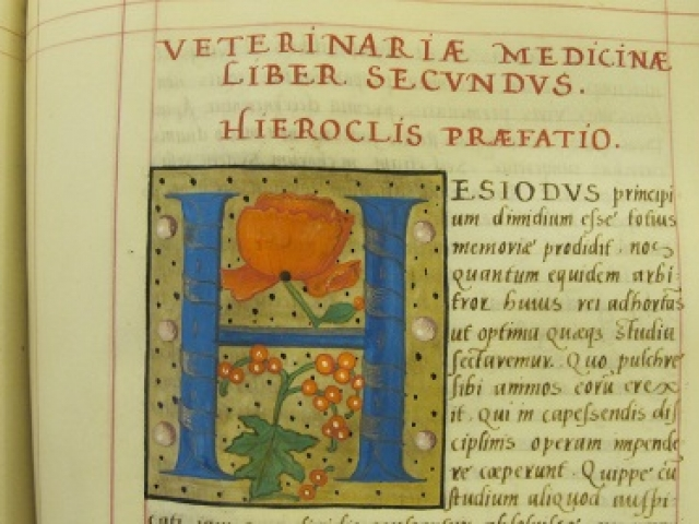 Example image of a medieval text